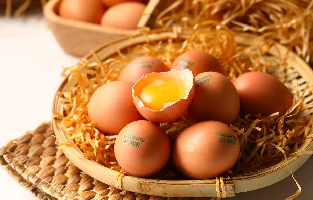 葉黃素雞蛋